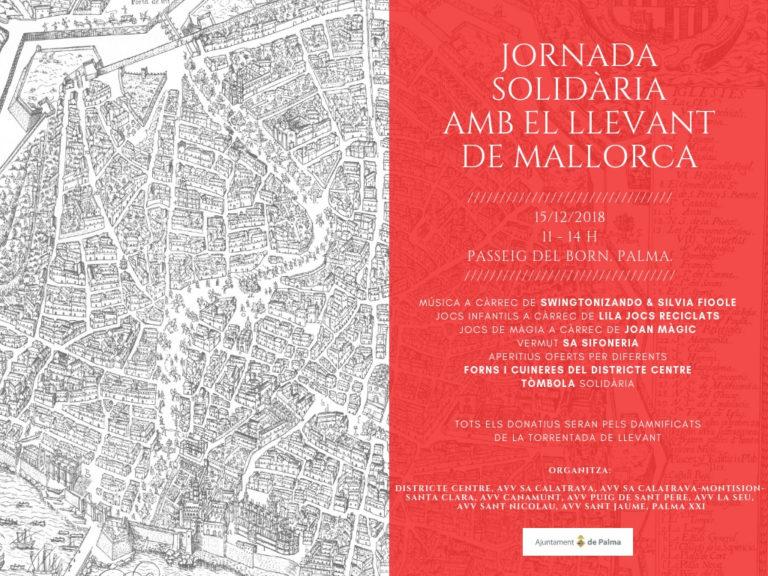 15/12/18: Jornada solidària, Passeig del Born, Palma